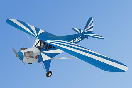 World Models CLIPPED WING  CUB 1/5 Scale (Blue) 61 ART
