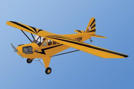 World Models CLIPPED WING CUB 1/4 Scale (Cub Yellow) 91 ARTF
